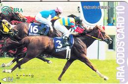 JAPAN - Horse Racing, JRA ODDS Card, Used - Horses