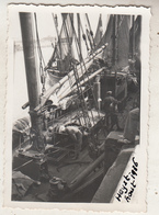 Heist - Augustus 1936 - Foto 6 X 9 Cm - Boten