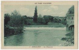 81 - B16553CPA - SEMALENS - La Chaussee - Très Bon état - TARN - Francia