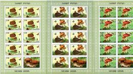 Tajikistan. 2019 Mushrooms(Butterflies,Hedgehog,Frog).3 M/S Of 9+label - Tagikistan