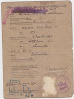 Berlare : Duits Paspoort Uit 1915 Van De Vrouw Van Dokter Lemmens - Documentos Históricos