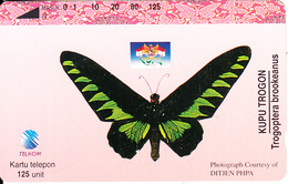 INDONESIA - Butterfly, Trogoptera Brookeanus, 03/96, Used - Butterflies