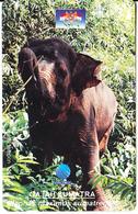 INDONESIA - Elephant, Elephas Maximus Sumatrensis, 03/96, Used - Phonecards