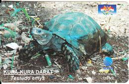 INDONESIA - Turtle, Testudo Emys, 05/96, Used - Turtles