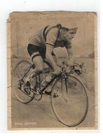 STAN OCKERS (toestand Zie Scan) - Cycling