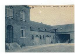 Melsbroek Pensionnat Des Ursulines - Melsbroeck - Ecole Ménagère Et Ferme (staat Zie Scan) - Steenokkerzeel