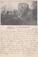 AK Beaumont - La Tour Salamandre - 1903 (42453) - Beaumont