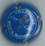 RILLY LA  MONTAGNE  N° 9   Lambert Tome 1  334/30  Bleu, Angelot Or - Rilly La Montagne