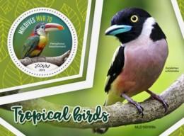 Z08 MLD190308b MALDIVES 2019 Tropical Birds MNH ** Postfrisch - Maldives (1965-...)