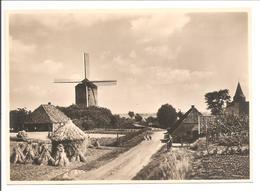 G254.4 Molen. Zeddam. Mühle-Mill-Moulin. Esperanto - Ganzsachen