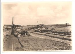 G254.5 Molen. Alblasserwaard. Mühle-Mill-Moulin. Esperanto - Ganzsachen