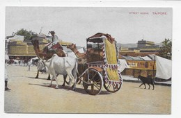 Street Scene. Tajpore - India