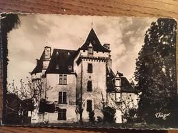 CPA, CPSM, Alentours De JUILLAC, Château De Chabrignac, Collection Madame Gaby, Corrèze,19, Non écrite - Juillac