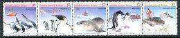 Australian Antarctic Territory 1988 Environment, Conservation & Technology Set MNH (SG 79-83) - Australian Antarctic Territory (AAT)