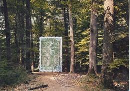 Carte  Maximum    FRANCE   Forêt  De  TRONCAIS    Exposition  Philatélique   SAINT  BONNET  TRONCAIS   1976 - Briefmarkenausstellungen