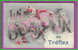 CPA (29 Finistère) - TREFLEZ - Un Bonjour De Treflez Avec Des Fleurs Et Une Hirondelles - écrite Voyagé Oblitéré - France