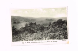 Bas Plateau Campinois,près De REkem. - Lanaken