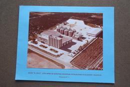 ARROZ SOS Algemesi Valencia Factoria N° 1 ( Format Photo Net +/- 12,5 X 17 ) Navidad 1977 ( Zie Foto Voor Details ) ! - Lieux