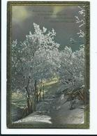 Christmas Postcard Merry Xmas 1922 Card Wildt And Kray 3149 - Navidad