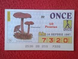 CUPÓN DE ONCE LOTTERY CIEGOS SPAIN LOTERÍA BLIND 1987 SETA SETAS MICOLOGÍA HONGOS MUSHROOM CHAMPIGNON HONGO PIMPINELLA.. - Billetes De Lotería
