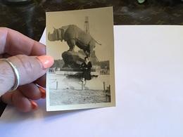 Photo Noir Et Blanc à Bord Blanc 1936  Femme Assise à Côté D'une Statue Rhinocéros Paris Tour Eiffel - Personnes Anonymes