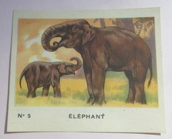 Image - Bon Point Animaux - Chaussures Morvan - N° 5 éléphant - Vieux Papiers