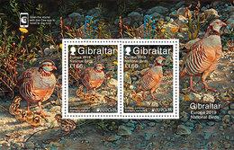 "GIBRALTAR 2019 - EUROPA 2019 - -""AVES - BIRDS/WILDLIFE - VÖGEL - OISEAUX""- BARBARY PARTRIDGE  - SOUVENIR SHEET - Gallináceos & Faisanes"
