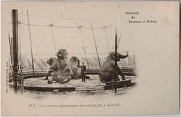 Les Artistes Gigantesques Chez BARNUM & BAILEY - Ed. Courmont - Cirque, éléphants, Dresseur - Elephants