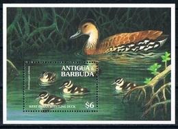 Bloc Sheet Oiseaux Canards Birds Ducks Neuf  MNH ** Antigua & Barbuda 1994 - Canards