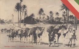 12643-TRIPOLI(LIBIA)-GUERRA ITALO-TURCA-TRASPORTO MERCANZIE SU CAMMELLI-1913-FP - Libya