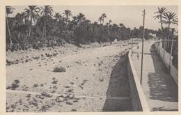 12646-DERNA(CIRENAICA)-VIA WADI'-EX COLONIE ITALIANE-1936-FP - Libia