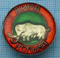 USSR / Badge / Soviet Union / RUSSIA Kolyma. Dima Mammoth. Ancient Elephant 1970s - Animals