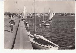 29 - Roscoff - Régates Dans Le Bassin Du Port - Roscoff