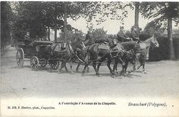 Brasschaat (Polygone) - A L'entrée De L'Avenue De La Chapelle. (Hoelen 279) - Brasschaat