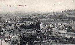 Hony Panorama  Hotel Des Familles Clement-Briers Circulé En 1912 - Esneux
