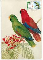 Conure à Gros Bec (Psittaciforme), Carte-maximum Mexique - Perroquets & Tropicaux