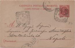 Cartolina Post. Leoni Cent. 10 Viaggiata Annullo Tondoriquadrato Monteleone (Catanzaro) 02.06.1907 - 1900-44 Vittorio Emanuele III