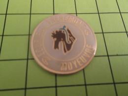 912d Pin's Pins / Beau Et Rare : THEME : ADMINISTRATIONS / ECOLE DE TREHEMONT MOYEUVRE - Administrations