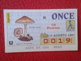 CUPÓN DE ONCE LOTTERY CIEGO SPAIN LOTERÍA BLIND SETA SETAS MICOLOGÍA HONGOS MUSHROOM CHAMPIGNON HONGO AMANITA PHALLOIDES - Billetes De Lotería