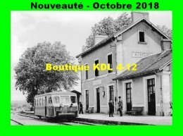 AL 545 - Autorail Billard N° 902 En Gare - RICHELIEU - Indre Et Loire - CFD - Stations - Met Treinen