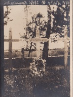 Originalfoto Von Soldatengräbern In Hryniewicze Wielkie - Weißrussland