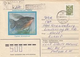 CCCP R-Brief 1985 - 10 K Sondermarke Auf Schmuckbrief Gel.v. Russland > Oranienburg - 1923-1991 UdSSR