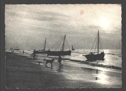 Belgische Kust - Dans Le Bassin Aux Bords Tranquilles ... - Vissersboten / Bateaux De Pêche - Unclassified