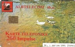 USATA-ALBANIA - Albanie