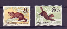 Chine N° 2520 /2521 Neuf Sans Charniere XX  MNH Zibeline - 1949 - ... Repubblica Popolare