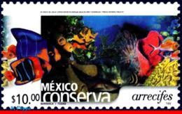 Ref. MX-2374 MEXICO 2004 NATURE, CONSERVATION - REEFS,, FISH, (10.00P), MNH 1V Sc# 2374 - Mexique