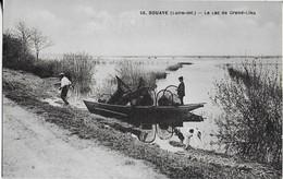 BOUAYE ( Loire -Inf.) Le Lac De Grand Lieu - Bouaye