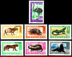 Ref. UR-C361-68 URUGUAY 1970 ANIMALS, FAUNA, 1971,BIRDS,FUR SEAL,RHEA,, PUMA, NUTRIA,SET COMPLETE MNH 7V Sc# C261-C268 - Felini