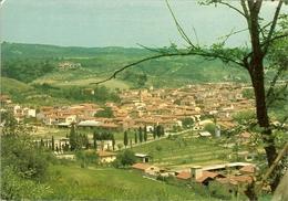 """CP De LIMITE SULL'ARNO  """" Panorama """" - Firenze"""
