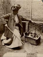 GATO CHAT KAT CAT  16*12CM Fonds Victor FORBIN 1864-1947 - Fotos